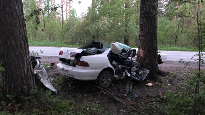 «Хонду»расплющило после столкновения с деревом на трассе под Новосибирском: погиб водитель