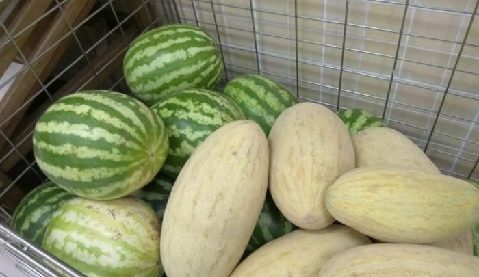 Десять правил, как выбрать спелый арбуз и дыню