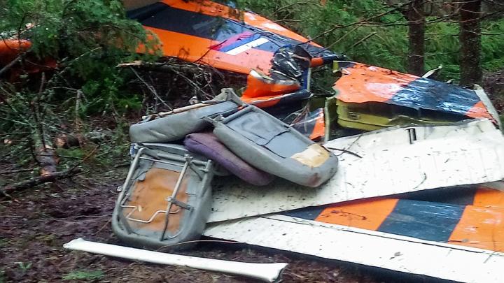 Следственный комитет опубликовал видео с места крушения самолета под Пермью