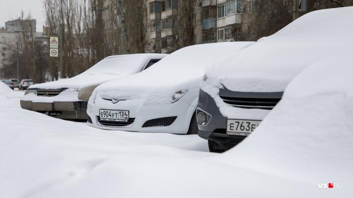 Мело, мело по всей земле: на Волгоградскую область обрушатся снежные зерна