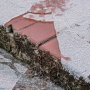 Изморозь и гололедица: МЧС предупреждает жителей Перми и края об ухудшении погоды