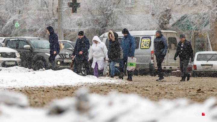 Морось и щепотка снежных зерен: после весеннего вторжения Волгоградскую область заморозит до -15 °С