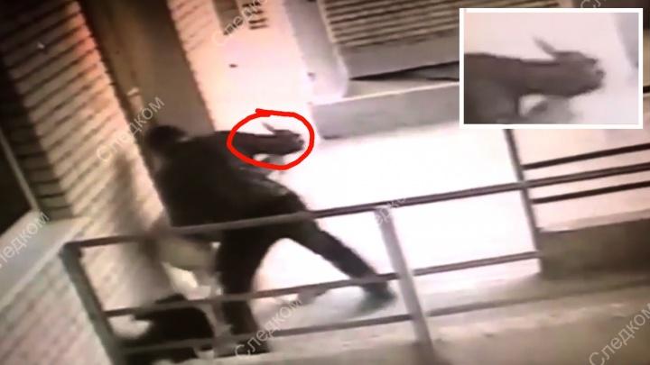 Пытался убить знакомую: ростовчанин, сломавший нож о жертву, пойдет под суд