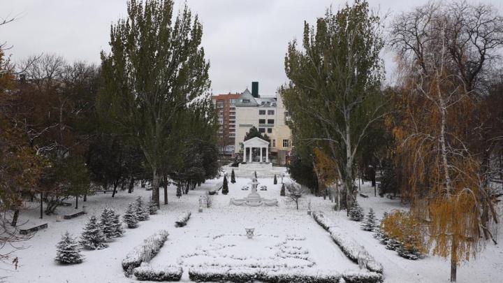 Время сажать: в день первого снегопада чиновники объявили закупку на саженцы для осенней посадки