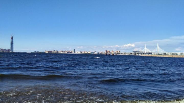 Переезд в Санкт-Петербург: за и против от омичей, оставшихся в новом городе и вернувшихся назад