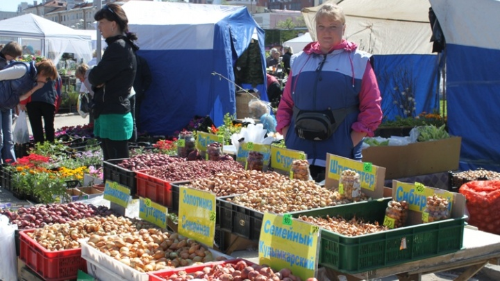 В Перми откроются ярмарки выходного дня, на которых будут продавать продукты, саженцы и сувениры
