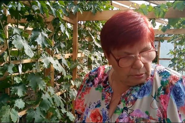 67-летняя женщина проводит экскурсию по теплице, в которой посажены 24 сорта винограда