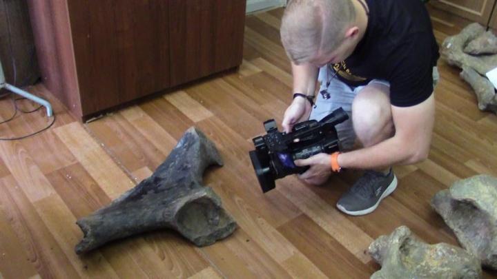 Росгвардейцы нашли на улице Азова кость мамонта
