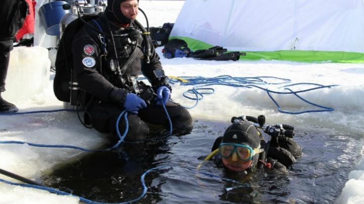 Водолазы будут исследовать Рыбинское водохранилище: что они хотят найти