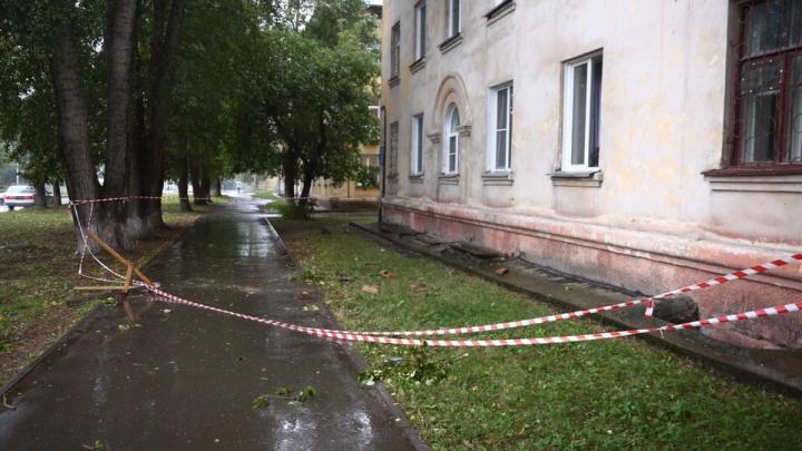 Упала берёза, полетели кирпичи: сильный ветер разбушевался в Ленинском районе