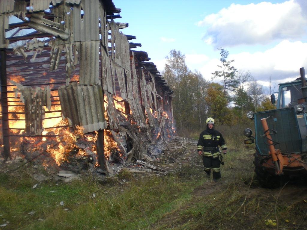 Практически  200 тонн сена сгорели под Выксой из-за детской игры соспичками