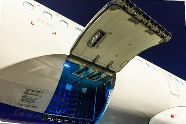 МАЗ повредил корпус самолёта, когда сдавал назад при разгрузке багажа