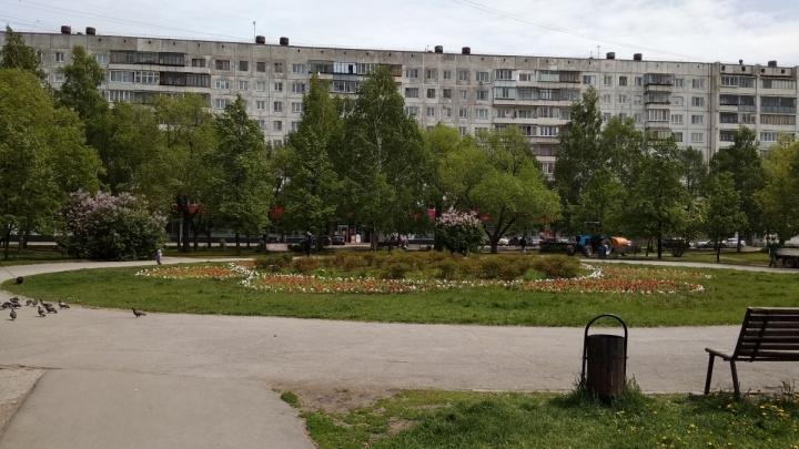 Это не заказывали: в сквере на северо-западе Челябинска запретили строить кафе