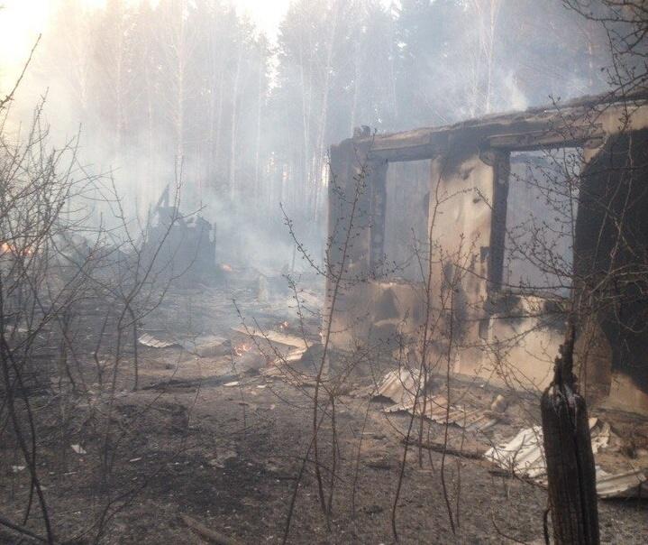 Лесной пожар подступил к садовому товариществу и один за другим уничтожал дачные участки