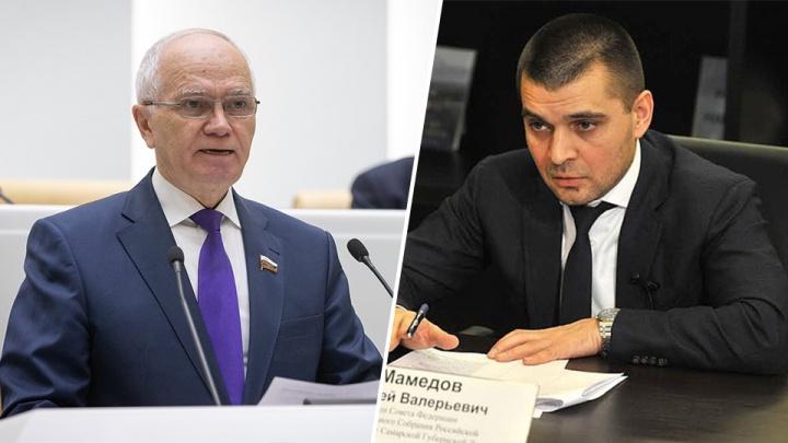 Гектары и пасеки: самарские сенаторы отчитались о доходах за 2018 год
