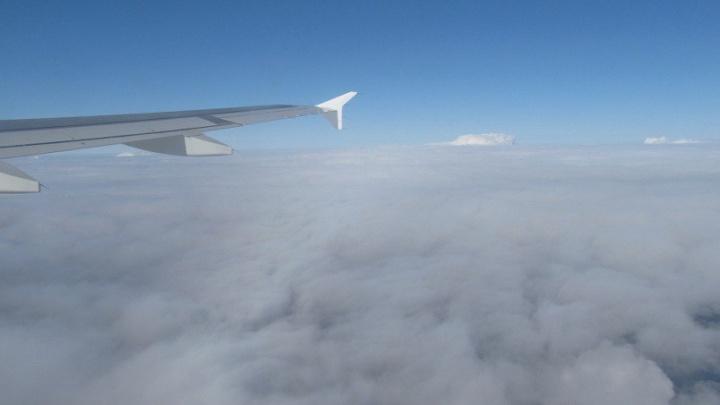 Рейсы в Уфу из Москвы отменили из-за непогоды