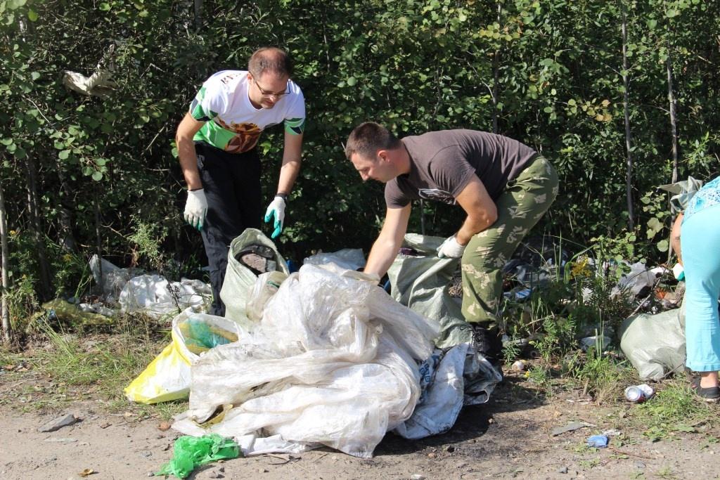 В правительстве похвастались, что добровольцы разгребли уже 70 лесных свалок