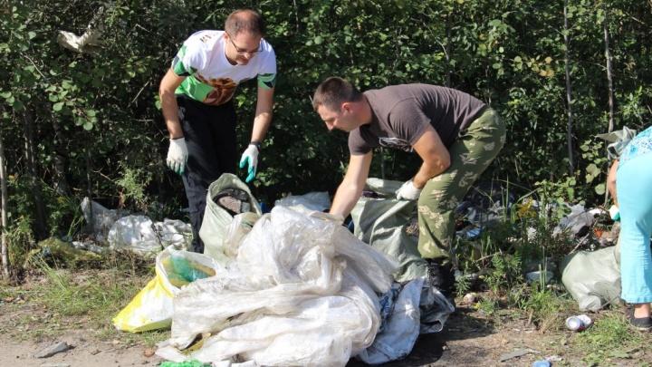 Разгребать свалки в ярославских лесах отправили хоккеистов: что на это сказал Андрей Коваленко