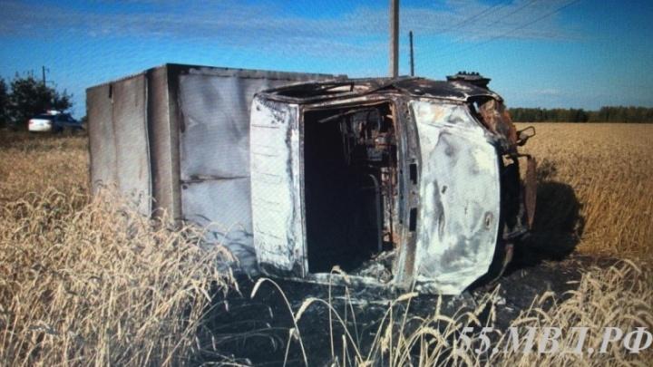В Омской области задержали дворника, который украл, перевернул и сжёг «Газель»