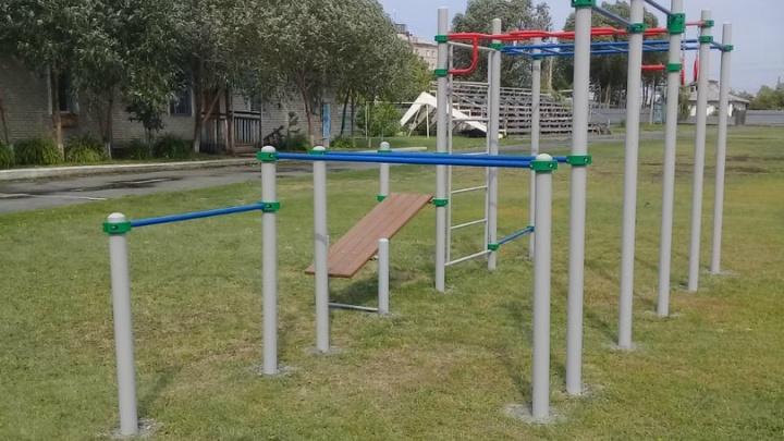 В курганских школах появятся площадки для воркаута