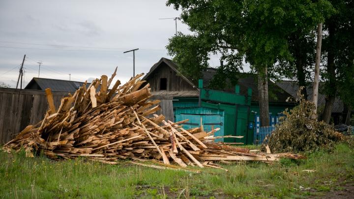 Жителя Енисейска заставили выплатить полмиллиона за незаконную рубку леса
