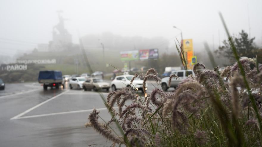 Дожди и солнце: какая погода ждет ростовчан на этой неделе