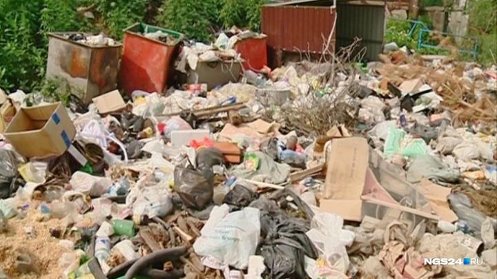 «Хочется найти виновных»: случайный слайд стал причиной проведения проверки мэрии и мусорщиков