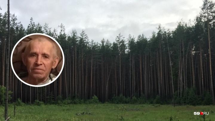 Пропавшего в лесу под Усть-Качкой пенсионера нашли его родственники