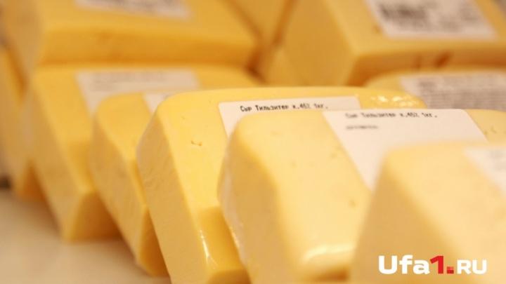 В Уфе открыли набор на курсы сыроваров