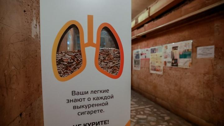 Бесплатную проверку легких устраивают в Красноярске. В прошлый раз патологии нашли у 11 человек