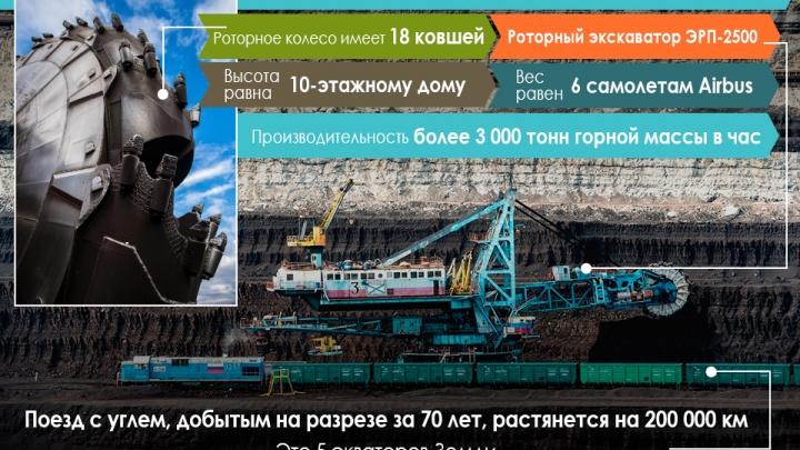 Повод для гордости: поезд с углем, добытым на Бородинском разрезе, может опоясать Землю пять раз