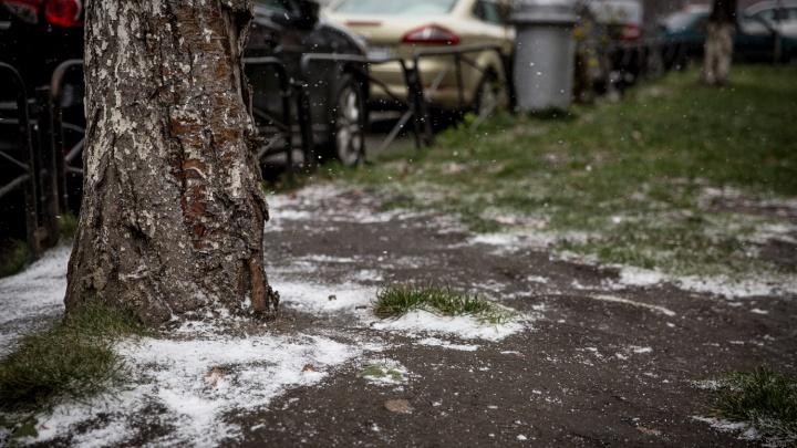 Синоптики объявили последнее предупреждение о заморозках