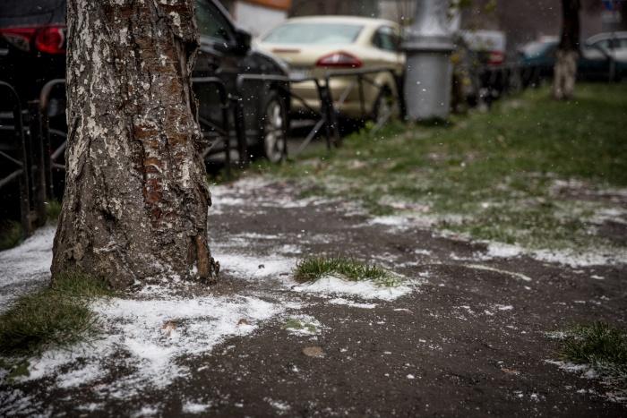 В пригороде Новосибирска будет –1, а по области ожидают до –5 градусов