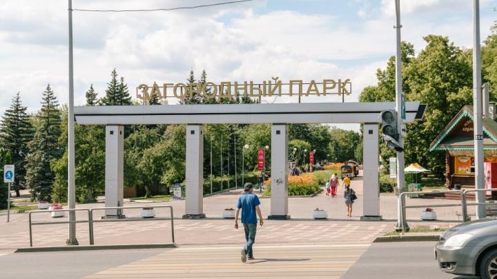 «Сделайте парковки и туалеты»: власти объявили конкурс на обустройство Загородного парка