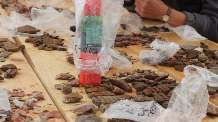 «Человечек из кремня»: археологи нашли в Кенозерье около семи тысяч древнейших предметов