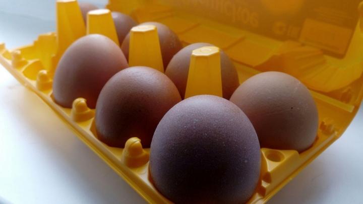 Роспотребнадзор нашёл омского производителя яиц, заражённых сальмонеллёзом
