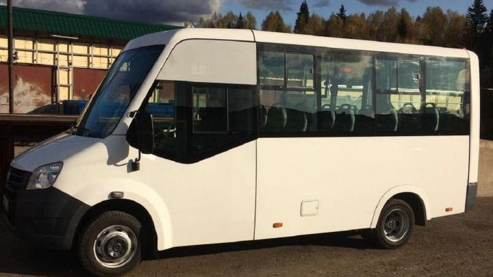 Жители поселков под Пермью добились от Минтранса запуска нового автобуса