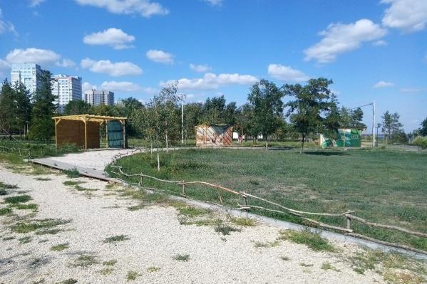 Территория парка зарастает опасной для аллергиков травой