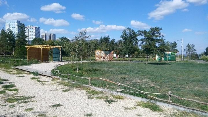 «Этномир» в ЦПКиО процветает: развлекательная зона в парке Волгограда заросла лебедой и амброзией