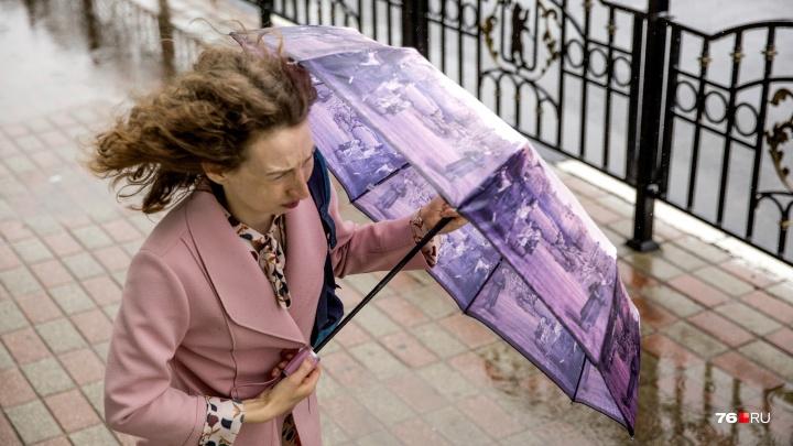 Экстренное предупреждение: погода в Ярославской области испортится ещё сильнее