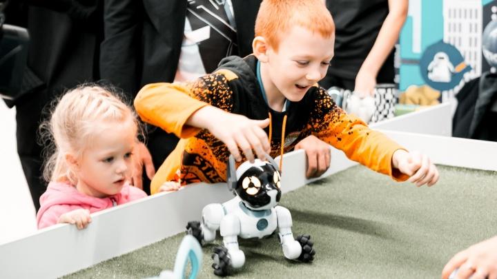 Технологии сближают: в Новосибирск завезли коммуникабельных роботов со всего мира