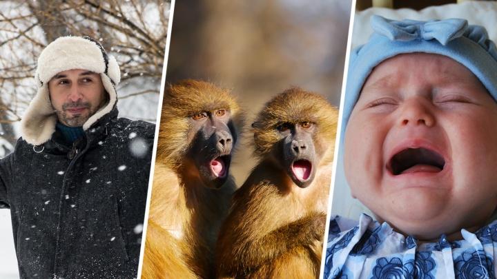 «Самки делают свой выбор»: реакция сибиряков на колонку о том, что в России «не от кого рожать» (10 жарких мнений)
