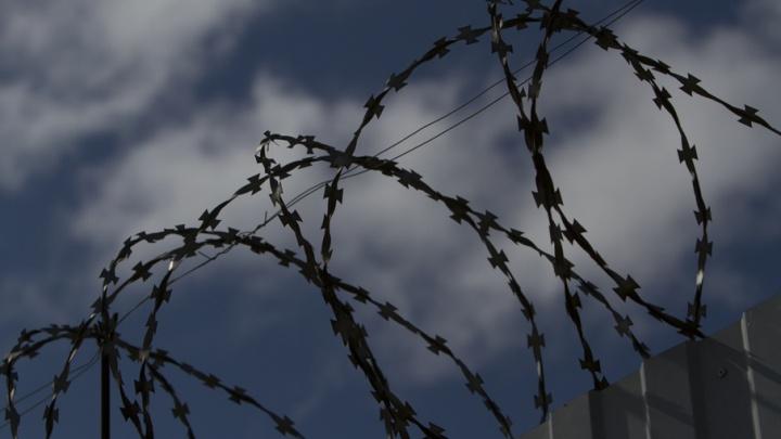 Сторонника «Правого сектора» осудили в Челябинской области