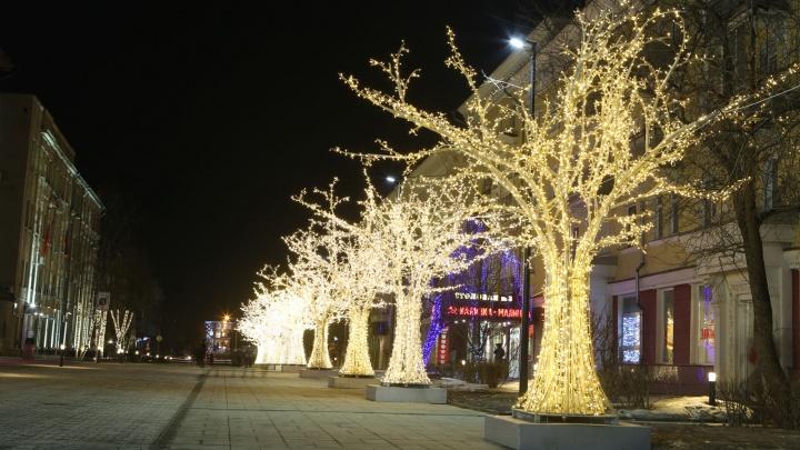 Красноярцы устраивают фотосессии у новой аллеи со светящимися деревьями на Дзержинского