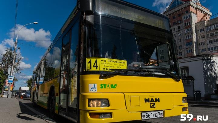 С безналом и системой пересадок: власти рассказали, каким будет общественный транспорт в Перми