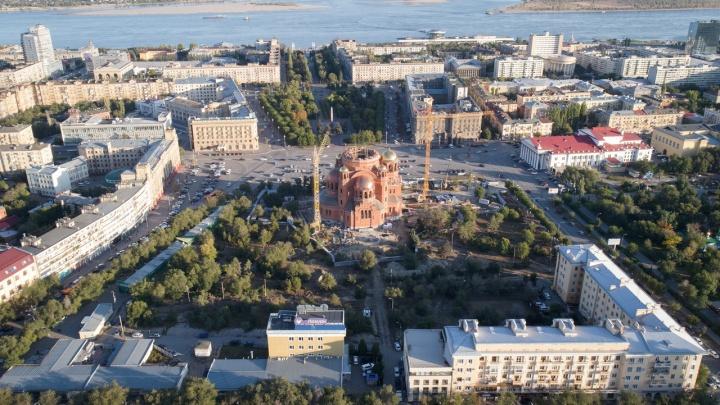 Новый депутат городской думы получил свой первый госконтракт на вырубку деревьев в центре Волгограда