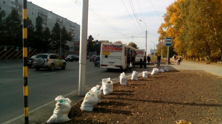 Автобусы здесь больше не стоят: на Бориса Богаткова перенесли остановку