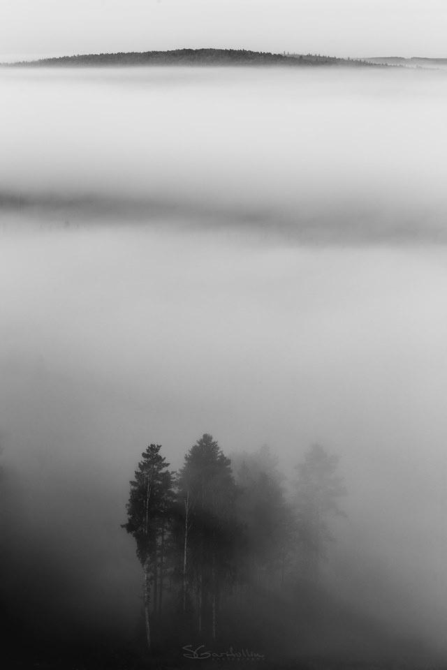 Кадр сделан на горе Теплой за Первоуральском. «Густой туман, словно неспешная река, тек под горой. Первыми показались деревья, они словно выходили из мглы»
