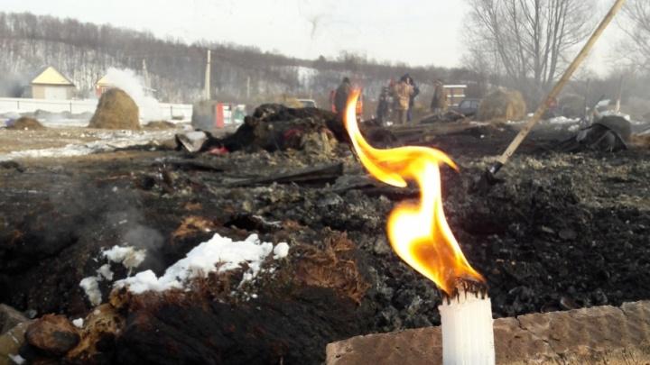 Эксперты рассказали, из-за чего сгорел конный клуб в Башкирии