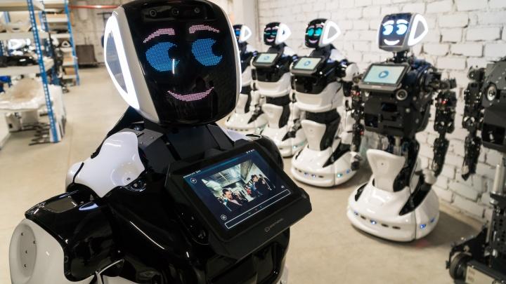 «Роботы построят метро»: Промобот предложил свою кандидатуру на пост губернатора Прикамья